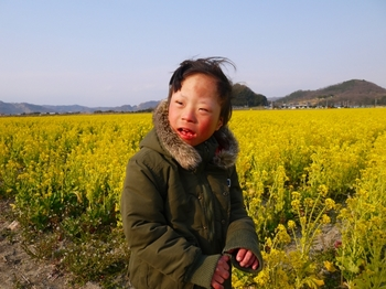 笠岡ベイファーム菜の花畑5.jpg